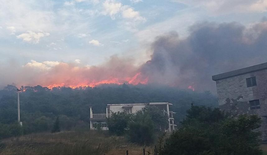 ДФ позива чланство и присталице                                                    да помогну у гашењу пожара