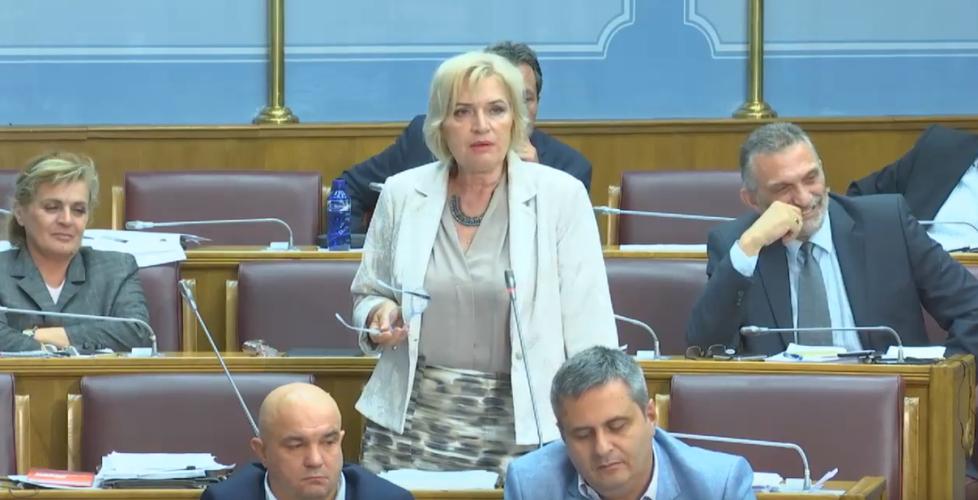 Јочић: Долазак миграната у Црну Гору                                                                  опасност за националну равнотежу